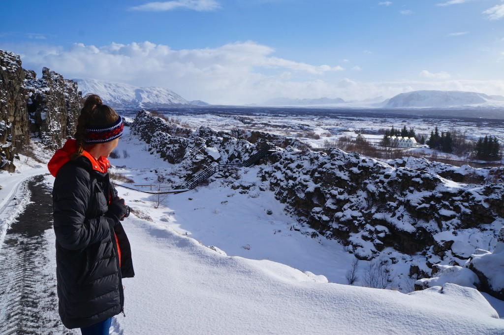 Tori at Þingvellir National Park