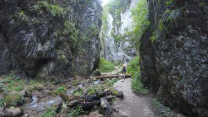 7 ladders canyon romani.